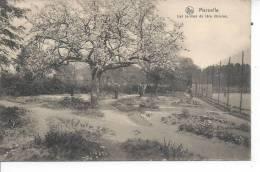 BELGIQUE - MARNEFFE - Les Jardins De 1ère Division - Belgique