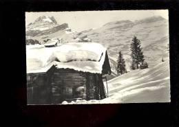 LES DIABLERETS Alpes Vaudoises Chalet Et Le Scex Rouge - VD Vaud