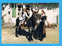 CP - En Poitou- Les Pibolous De  La Mothe St Héray- Costumes-âne - Costumes
