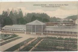 CPA 77 LORREZ LE BOCAGE Les Serres Du Château Du Comte De Ségur Carte Colorisée 1908 - Lorrez Le Bocage Preaux