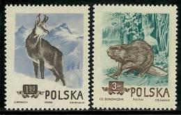 Pologne - Année 1954 - Y & T  N° 787 - 788 * TC Voir Scan - Neufs