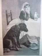 Femme Avec Chat Et Chien , Gravure De Corbineau 1893 - Documents Historiques