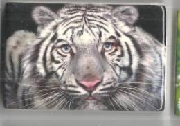 Magneti Tigre, Piastrelline In Ceramica Con Calamita - Dieren & Fauna