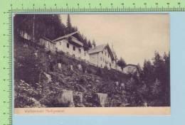 Autriche Tirol  (1907 Heiligwasser Wallfahrtsort ) Post Card Carte Postale - Autriche