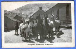 Bolivien, COMPANIA HUANCHACA DE BOLIVIA, LAMA, 192? - Bolivie