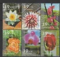 Nederland (2002) Yv. 1918/23  /  Flowers - Flores - Fleurs - Blumen - Vegetales