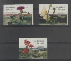 Nederland (2001) Yv. 1829/31  /  Flowers - Flores - Fleurs - Blumen - Vegetales