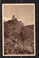 34595   Germania,      Burg  Thurant  A. D. Mosel  -  Blick  Von Der  Kreuzlay  Aus,  NV - Germania