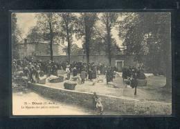 22 - DINAN : Le Marché Des Petites Cochons