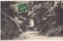 CPA 91 MARCOUSSIS Chemin De Nozay 1916 - Francia