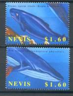 NEVIS   2002   Yvert 1590/1591   Michel 1785 - 1787   Baleine   Whale - Whales