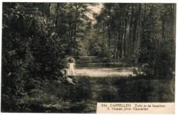 Kapellen, Cappellen, Zicht In De Bosschen (pk6617) - Kapellen