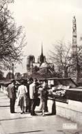 Les Bouquinistes - Notre-Dame De Paris