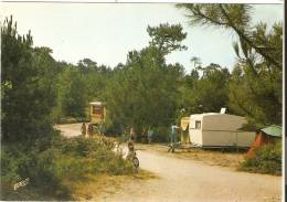 CAMIERS Camping  DES SABLES D OR - France