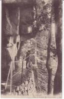 88=LA SCHLUCHT...Dans Le Sentier Du Frankental ---LL - France