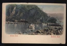 SECOND CREEK BUFFALO RIVER - Alberta