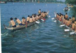 (260) Dragon Boat Racing - Barche