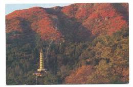 Thaïlande - The Fragrant Hills - Sjangsan Parko - Tailandia