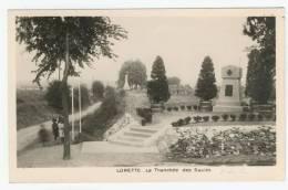 62 - Lorette      La Tranchée Des Saules - France