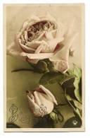 Bonne Année - Roses - Photo H. Manuel Colorisée - Lettres Relief - Ecrite Belle Calligraphie & Timbrée - Non Classés