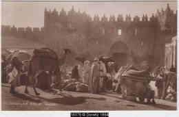 16379g JERUSALEM - Wheat Market - Carte Photo - Israel