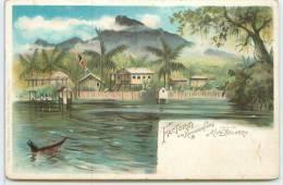 FACTOREI Am Kamerunfluss  - Vis A Vis King Beldorf. - Cameroon