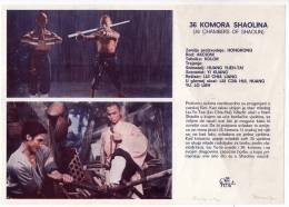 "PROGRAMS FILM ""36 CHAMBERS OF SHAOLIN"" HONGKONG FILM CROATIA FILM SIZE 24X17 CM - Programs"