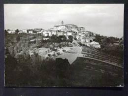 MARCHE -ASCOLI PICENO -SPINETOLI -F.G. LOTTO N°220 - Ascoli Piceno