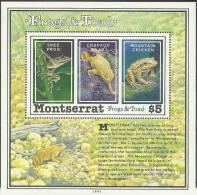 MONTSERRAT - 1991 Frogs Souvenir Sheet. Scott 783. MNH ** - Montserrat