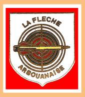 SUPER PIN´S TIR à L'ARC : La Flèche ARBOUANNAISE, Ville D'ARBOUANS Région Franche Comté Proche Montbeliard - Bogenschiessen