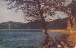 C2466 - CRESCENT LAKE, Olympic Peninsula - Other