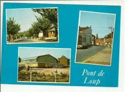 Pont De Loup ( Farciennes ) Multi Vues - Farciennes
