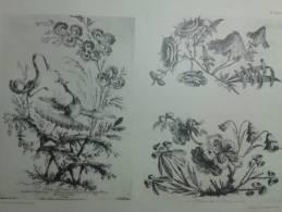 Dessin Oeuvre Jean Pillement  Peintre Du Roi De Pologne Chinoiseries Oiseaux Chinois Planche 63-64 - Zeichnungen