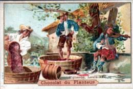 CHROMO - CHOCOLAT DU PLANTEUR - VIGNERON, LOUIS XIV - Autres