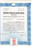 O) 1936 MEXICO, ONE STOCK, COMPAÑIA MINERA DE AURORA BOREAL. - Shareholdings