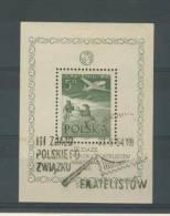 POLOGNE       ---   N°   13 - Blocks & Kleinbögen