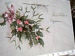 BUON NATALE VISCHIO ILLUSTRATA GALBIATI VB1952 Annullo ACCELERARE RECAPITO INDICARE  EC11402 BOLLO AMG-FTT - Natale