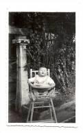 Photo, Bébé, Martine à 8 Mois - Dimension :11 X 6.5 Cm - Personnes Anonymes