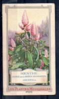 Chromo Les Plantes Médicinales - Menthe - Altri