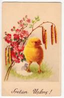 EASTER CHICKEN EGG FLOWERS M.D.O. Nr. 8037 OLD POSTCARD - Easter