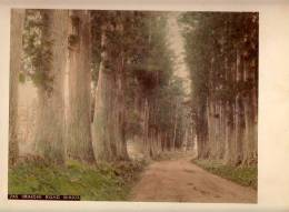 PHOTOGRAPHS Nikkō National Park, In Nikkō, Tochigi IMAICHIROAD  NIKKO ,CARDBOARD SIZE 25 X 19.5 Cm - Other