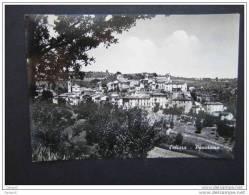 ^ SALTARA PESARO PANORAMA 31 - Pesaro