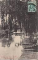 A Picturesque Spot In The Park, Pietermaritzburg Posted Durban, 1908 - Afrique Du Sud