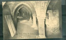 Gand - Chateau Des Comtes De Flandre : écurie Du Comte ( Cave De La Torture Après 1550 )- Um91 - Gent