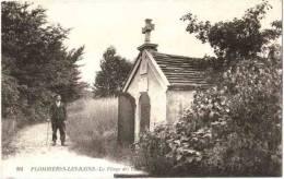 CPA 88 (Vosges) Plombières-les-Bains - La Vierge Des Champs - Animée - Plombieres Les Bains