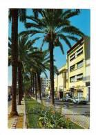 Maroc: Kenitra, Rue Princesse Lalla Aicha, Photo Mar Marin, Automobile (13-105) - Autres