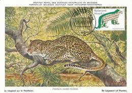 D10199 CARTE MAXIMUM CARD FD 2011 NETHERLANDS - LEOPARD PANTHERA CP MUSEUM ORIGINAL - Big Cats (cats Of Prey)
