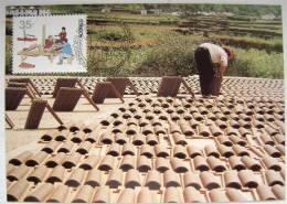 1991 AZORES ACORES PORTUGAL TYPICAL LOCAL JOB JOBS MAXIMUM CARD MC 1 - Jobs