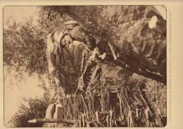 Planche Du Service Photo De L'armée Belge Guerre WW1 Militaire Fusil Mitrailleur à Noordschoote - Libri, Riviste & Cataloghi