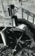 WAMBEEK Bij Ternat (Vlaams-Brabant) - Molen / Moulin - Het Rad Van De Klapscheutmolen Nog In Vol Bedrijf (1982) - Ternat